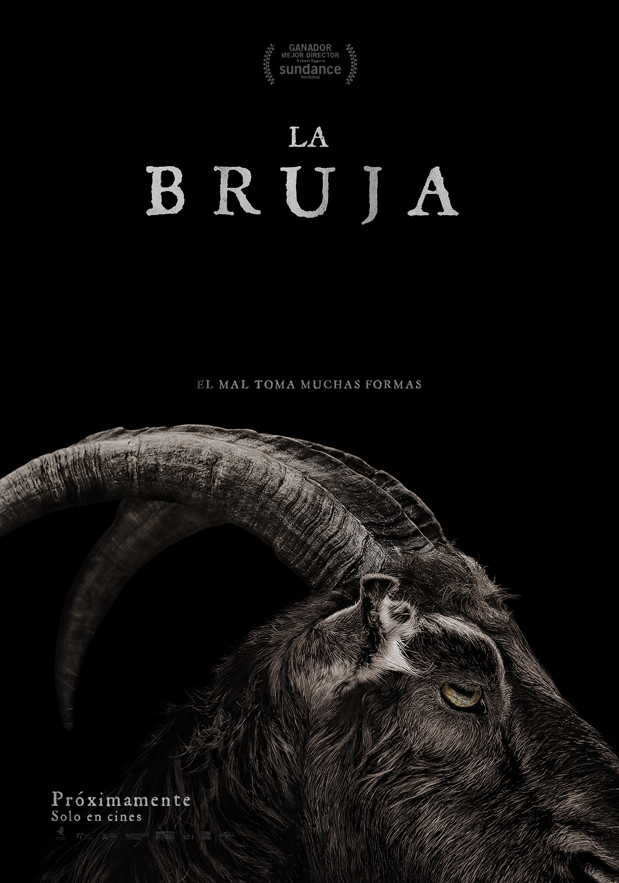 la-bruja-the-witch-poster-latino-espanol-mexico-terror-pelicula-2016-criticsight
