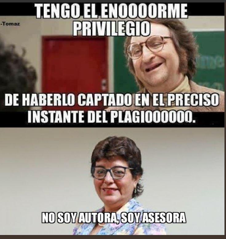 Ñe. Imagen: Vexler Feminista